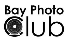Bay Photo Logo