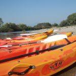 Outdoor Adventure Kayak/Canoe Trip